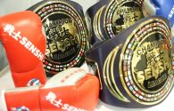 Two World and three European WAKO PRO titles at stake at SENSHI 7
