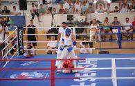 Breathtaking knockouts at 1st European Open KWU International Professional League