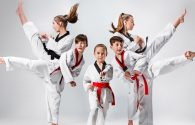 Differences between Karate and Taekwondo (PART 1)